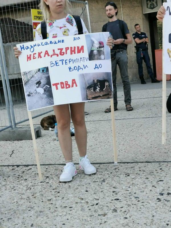 Протестиращи настояват за затваряне на приюта за кучета в село Каменар