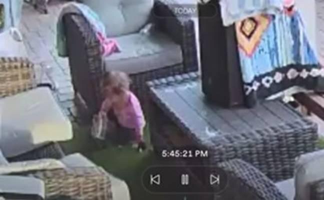 Мъж изпадна в шoк, след като откри, че дъщеря му небрежно си играе с огромна тарантула