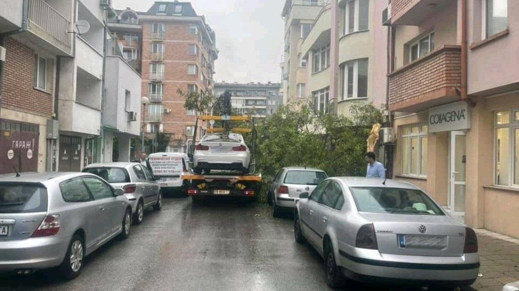 """""""Паяк"""" бутна дърво върху автомобили в Пловдив"""